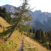sentiero 608 - da Val S. Nicolò verso Rifugio Passo S. Nicolò