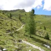 sentiero 608 - verso la Val Contrin